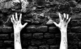 BENJAMIN NETANYAHU: HITLER NON VOLEVA STERMINARE GLI EBREI