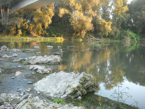"""I """"reperti"""" riaffiorati del vecchio Ponte Forlanini sono a testimonianza dello scempio che di quel ponte è stato fatto"""