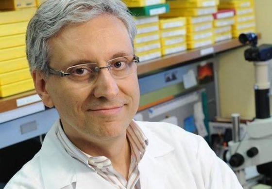 Cancro, scoperta clamorosa di un ricercatore italiano