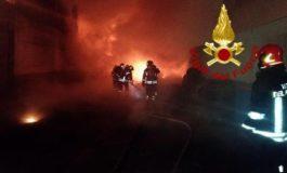 Strage di animali bruciati vivi nell'incendio di un ricovero a Voltaggio