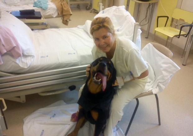 Presto in Piemonte gli animali domestici saranno ammessi in ospedale