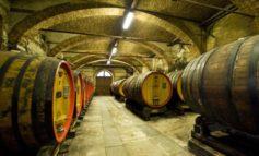L'Italia del vino rischia l'esclusione dai fondi Ocm per la promozione all'estero
