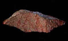 Scoperto il primo disegno della storia, ha 73.000 anni