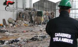 Da serra piena di fiori a discarica piena di rifiuti: curatore e giudice fallimentari nei guai