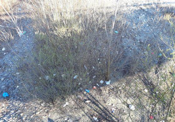 Getta rifiuti dal ponte sul Lemme: colto in flagrante, dovrà pagare una multa di 300 euro