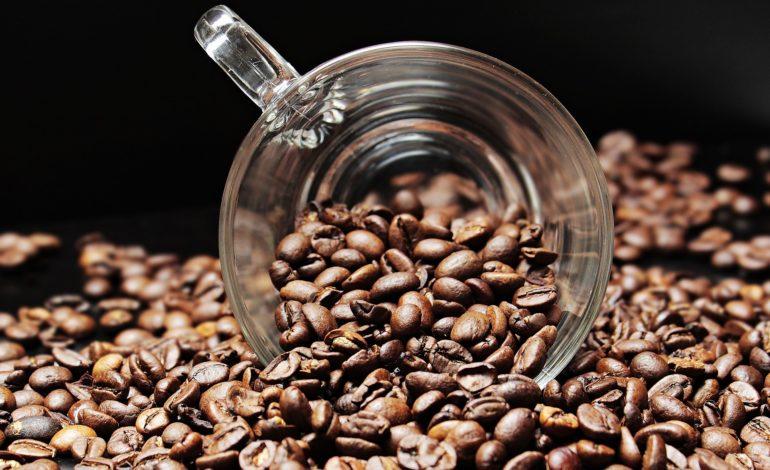 Tutti i chicchi di caffè: dal più caro al più amato