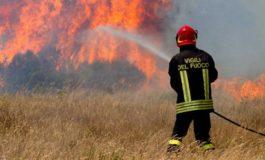 Incendi in provincia di Alessandria: a fuoco due campi di grano tra Castelceriolo e San Giuliano Nuovo, sterpaglie in fiamme nell'acquese