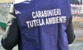 Puzze dall'Italgelatine di Santa Vittoria d'Alba: i Carabinieri del NOE di Alessandria sigillano una parte degli impianti