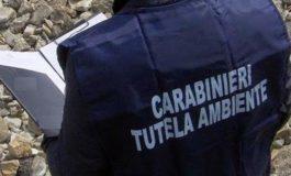 Filiera della plastica: Carabinieri del Nucleo Operativo Ecologico di Alessandria scoprono tre aziende non in regola