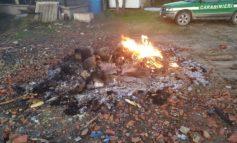 Combustione illecita di rifiuti: una denuncia da parte della Forestale di Ovada