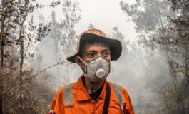 Le multinazionali non pagano le tasse ma rompono i coglioni: anche l'Indonesia sta bruciando per colpa loro