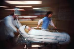 Punta dalle api muore all'ospedale per choc anafilattico