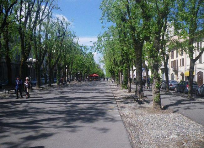 Pedone investito in viale Garibaldi a Vercelli: nuovamente sotto accusa la sicurezza stradale in città