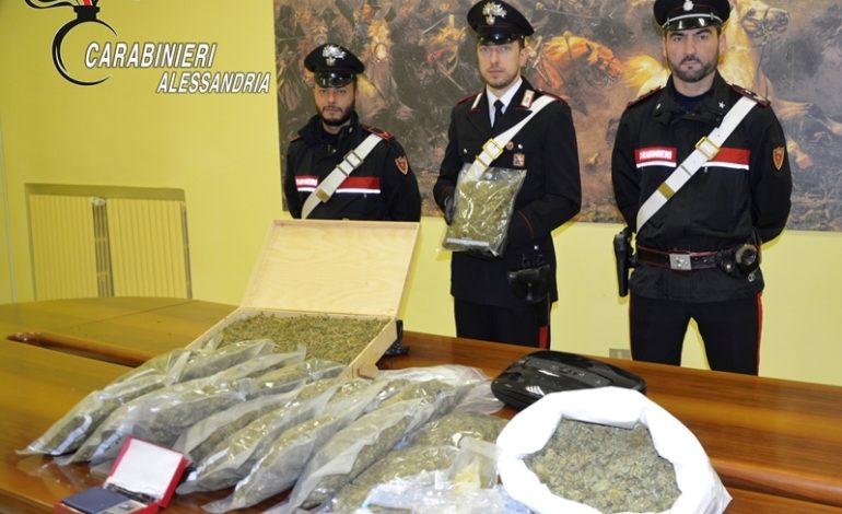 Blitz nella serra da parte dei Carabinieri: in manette un sessantaquattrenne coltivatore di marijuana, sorpreso con 25 chili d'erba