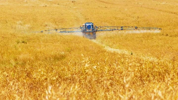 Dalla Regione Piemonte nuovi aiuti per gli agricoltori della provincia di Alessandria