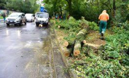 Continua a piovere su Piemonte, Lombardia e Liguria: nuova allerta della Protezione Civile