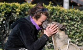 La brutta storia del cimitero degli animali, per qualche cadaverino in più