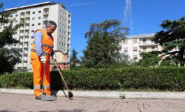 Da Amag Ambiente: lunedì 27 aprile riprende il servizio di raccolta a domicilio del verde