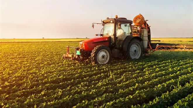 Da Coldiretti Alessandria: piano Marshall, meno burocrazia e semplificazione del voucher agricolo