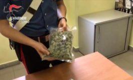 Trasportava l'amnèsia, un nuovo tipo di droga: arrestato corriere