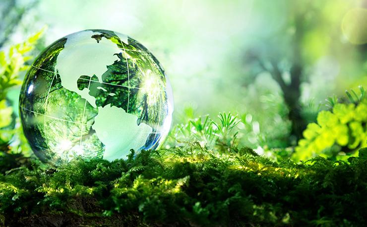 Dal Coordinamento Diritti Umani Lucca: riflettere sull'importanza della conservazione di tutte le specie viventi