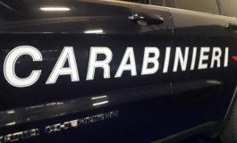 Carabinieri intervengono per una lite domestica e trovano un tavolo pieno di piantine di cannabis: nei guai cinquantaquattrenne residente nell'Astigiano