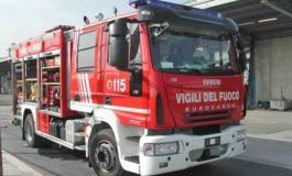 A Ovada gattina finisce in un tombino ed è salvata da volontari, Vigili del Fuoco e Carabinieri