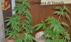 Vercelli, in manette due fidanzati ricercati: si nascondevano in un casolare