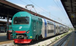 Rallentamenti sulla linea ferroviaria Vercelli - Santhià per un animale investito