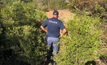Il giallo di Caronia finisce in tragedia, trovati i resti di Gioele lungo l'autostrada Messina-Palermo