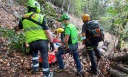 Marito scomparso nel bosco ritrovato vivo dopo giorni di ricerche