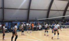 Crescono le adesioni di giovani atleti al settore S3 dell'Alessandria Volley