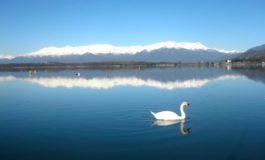 Grazie alla magia d'un lago unico al mondo riparte il Waterfestival Viverone 2020