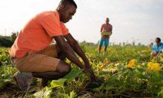 Da Coldiretti Alessandria: la vera Agricoltura Sociale fa bene all'Italia