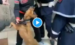 Sette agenti della polizia urbana di Firenze fermano una donna col suo cane per strada perché non indossa la mascherina