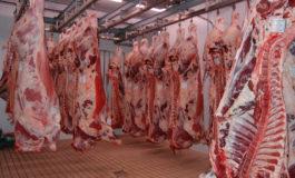 Da Coldiretti Alessandria: l'Europa ci invade con carne bovina straniera e mette in ginocchio il sistema