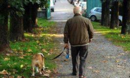 Da Aidaa – Italambiente Milano: come comportarsi col cane in tempo di coprifuoco (in zona rossa, arancione e verde)