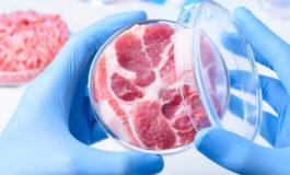 Da Coldiretti Alessandria: il 75% dice di no alla carne sintetica