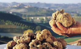 Da Coldiretti Alessandria: Covid, è corsa al cibo, prezzi al top da sette anni
