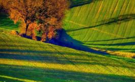 Come fa una sedicente azienda agricola a realizzare un biodigestore da 35.000 metri quadrati a Valmadonna?