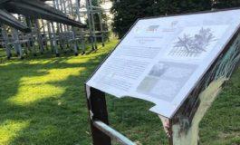 Vandalizzata la nuova targa del Monumento alla Resistenza di Cuneo