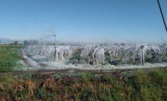 Alla faccia del presunto riscaldamento climatico stanotte nel Monferrato siamo andati sottozero