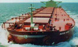 Il futuro del trasporto via mare è delle merci secche alla rinfusa (dry cargo)
