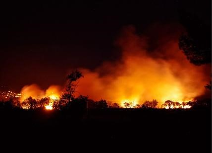 Il business degli incendi: come si crea un'economia per ora inattaccabile