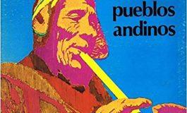 I Grigi e la musica andina
