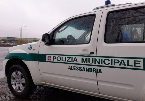 Al volante senza patente non si ferma all'alt della Polizia Municipale: rintracciato e auto sottoposta a fermo amministrativo